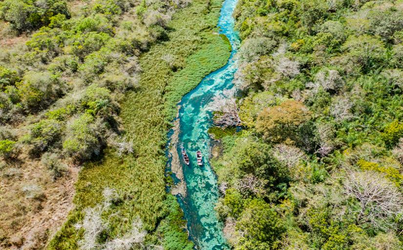 Resultado de imagem para rio sucuri