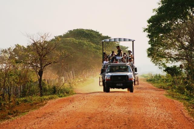 Safári Pantanal